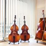 primebilder_vagg_lamellgardin_cellos