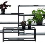 the botanic shelf 3