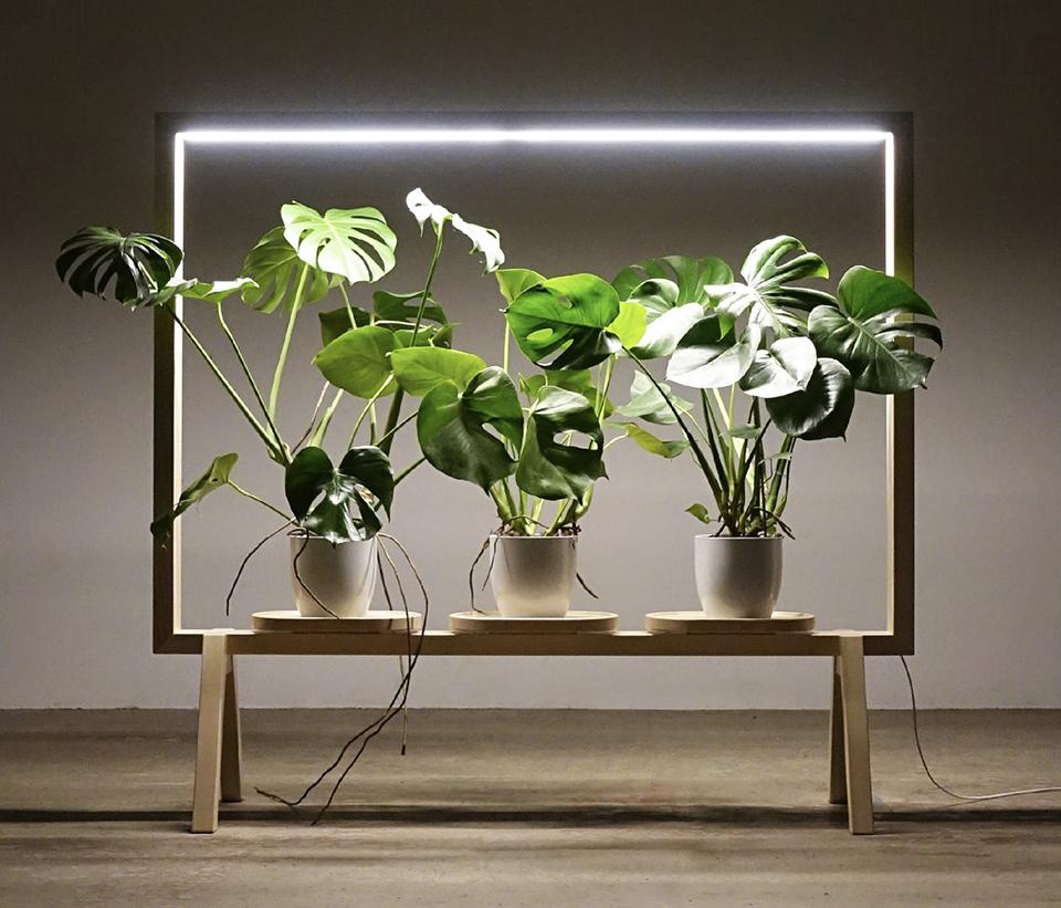 LimbusFloor Subtle GreenFrame golvskärm med belysning