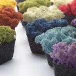 Ljudabsorbent i mossa pixel farger